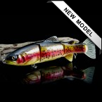 Lucky Trout -  Dark Rainbow Trout